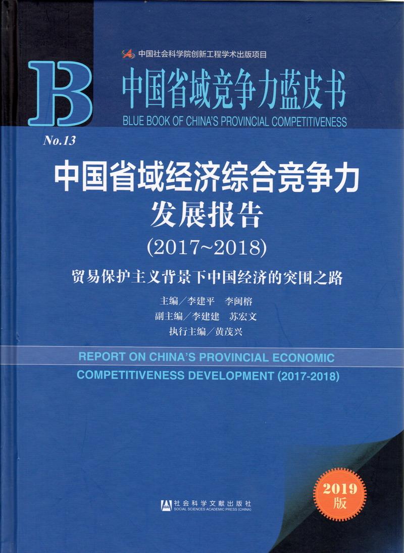 中国省域经济综合竞争力发展报告(2017-2018)